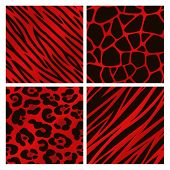 Animal Print Collection Red