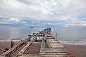 Old ruined pier in the Strait of Magellan. Collapsed on a wooden platform sitting flocks of sea gulls
