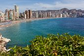 stock photo of costa blanca  - View of Benidorm - JPG