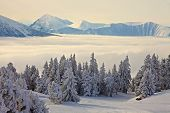 High mountain range in winter