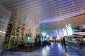 Lights are decorated at Haneda airport preparing for the coming Christmas
