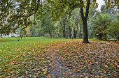 City Autumn Landscape