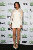 LOS ANGELES - NOV 26: Paula Patton at the 2014 Film Independent Spirit Awards Nominations Press Conf