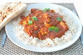 pic of curry chicken  - Plate of chicken curry with coriander and naan bread on the side - JPG
