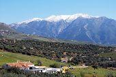 Farmland, Colmenar, Spain.