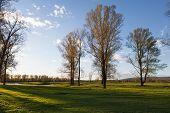 Sunny Landscape Of Ural Meadow