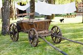 stock photo of ox wagon  - old oxen cart - JPG