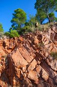 Castellon Desierto de las Palmas desert red mountains with pines at Spain