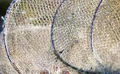 Fishing Equipment. Closeup Of White Fishnet Net Outdoor