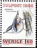 Eurasian Nuthatch Stamp