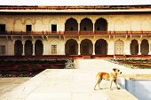 Agra Red Fort, Unesco World Heritage site, built by several Mughal emperors from XV to XVI centuries