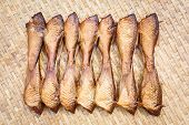 picture of threshing  - Close up Crispy smoke dried siamese mud carp fish on bamboo threshing basket - JPG