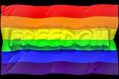 stock photo of gay flag  - gay flag velvet - JPG