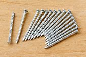 Galvanized Iron Nails
