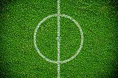 Natural Green Grass Soccer Field