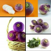 Healthy And Organic Food Concept