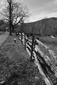 Fence along the