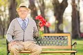 Senior man posing in park with red tulips seated on wooden bench