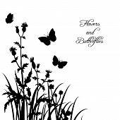 Silhouettes  of flowers and butterflies