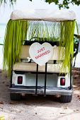 Just married sign on a golf cart at tropical wedding