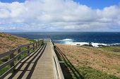 Coastal walkway