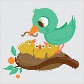 birds on nest feeding