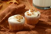 Carrot Cakr Cupcakes