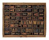 Alphabet In Antique Wood Letterpress Types