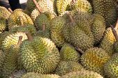 pic of south east asia  - Durian the world