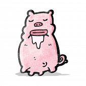 cartoon gross pig