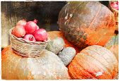 autumn harvest - pumkins and garnets, vintage picture