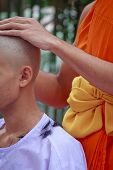 Hair On Lotus Leaves Tray From Ordination Of Thai Monk - Stock Image