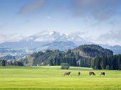 Mountains In Bavaria