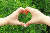 Hand making a heart shape on green
