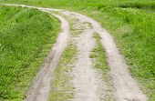 field road inside meadow