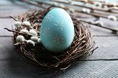 pic of bird-nest  - Bird colorful egg in nest and pussy willow branches on wooden background - JPG