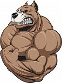picture of pitbull  - Vector illustration of a strong  pitbull with big biceps - JPG