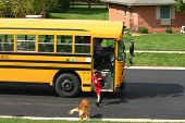stock photo of bus driver  - boy getting off school bus and dog greeting him - JPG