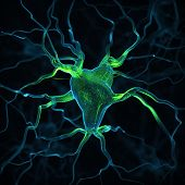 stock photo of neuron  - Neurons abstract background - JPG