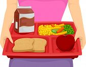 stock photo of food crops  - Cropped Illustration of a Person Carrying a Food Tray Composed of a Balanced Meal - JPG