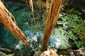 picture of cenote  - Aerial view to turquoise water lagoon in X - JPG