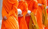 picture of buddhist  - Buddhist monks holding silver buddhist alms bowl in hand walking together in the morning - JPG