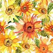 image of sunflower  - Vector illustration of floral seamless - JPG