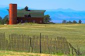 American Farm
