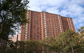 picture of public housing  - american public housing new york city usa - JPG