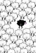 ...black sheep in the middle