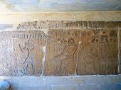 Hieroglyph In The Caves Of An Egyptian Temple, Mastaba From Ti, Cairo, Egypt