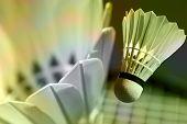 Abstract Close-up Badminton