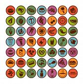 many vector food icons set 1