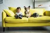 Adorable Kid With Dog And Cat Sitting On Yellow Sofa At Home poster